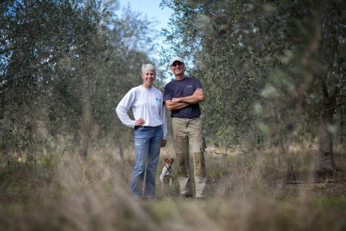 marlies-und-peter-in-olive-grove